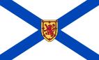 NS-flag